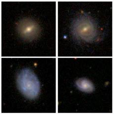 barred galaxies