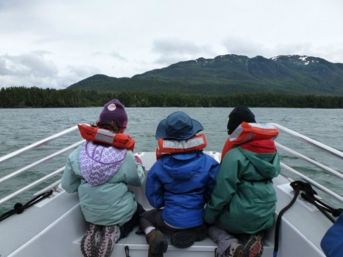 Looking for whales in Auke Bay, Juneau (Kate Atkins)