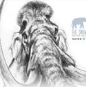 Citizen Paleontologists Are Making History