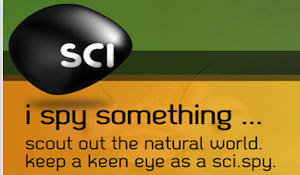 587-SciSpy