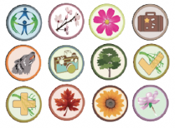 Floracaching Badges