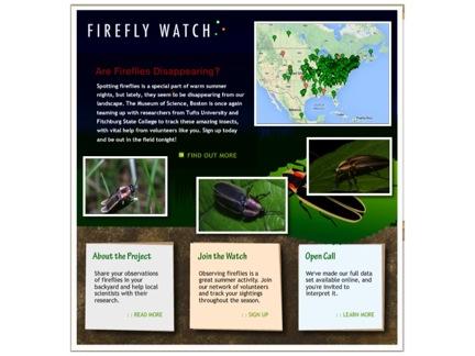FireflyWatch website