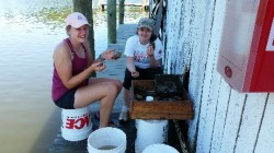 Volunteers having fun hand sorting through shell at Combs Creek marina. Photo by Monaca Noble.