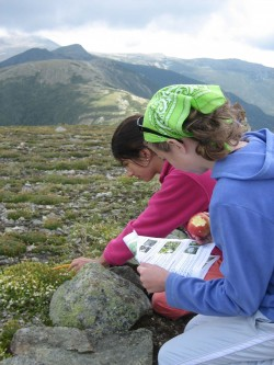 Citizen Scientists in AMC's Mountain Watch program. (Image credit: A Roy/AMC)
