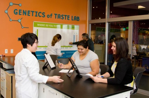 Citizen scientists participate in the genetics of taste lab (Image Credit: Denver Museum of Natural History)