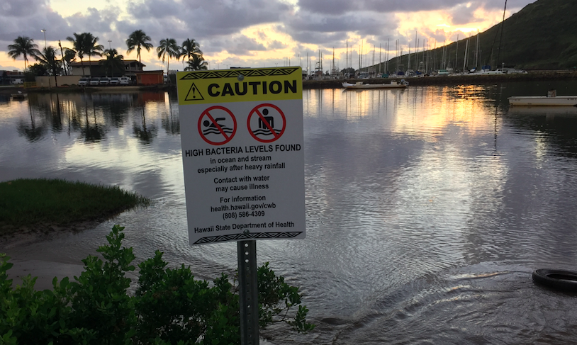 Kauai Blue Water Task Force