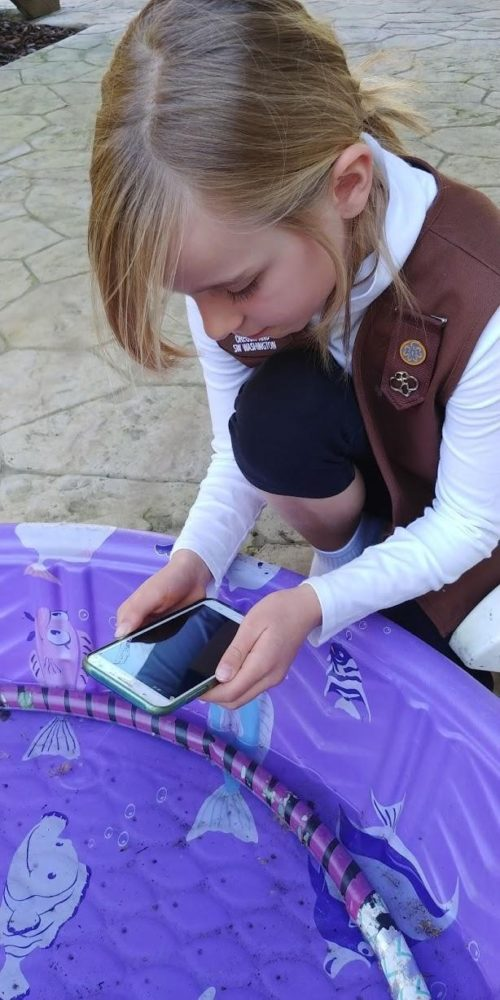 Girl Scout using the app