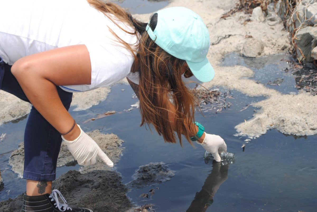 Citizen Science at the Beach