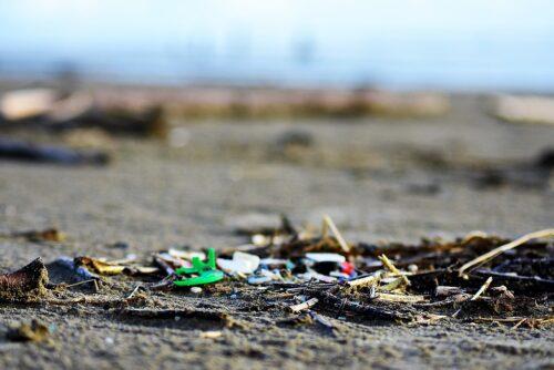 plastic litter pollution found on an oregon beach