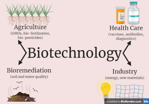 Biotechnology has many applications for agriculture, bioremediation, healthcare, and industry.