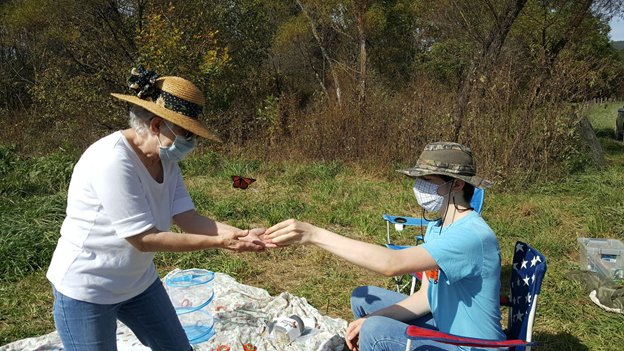 Volunteers releasing a tagged monarch