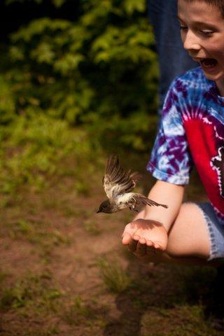 boy releasing a bird